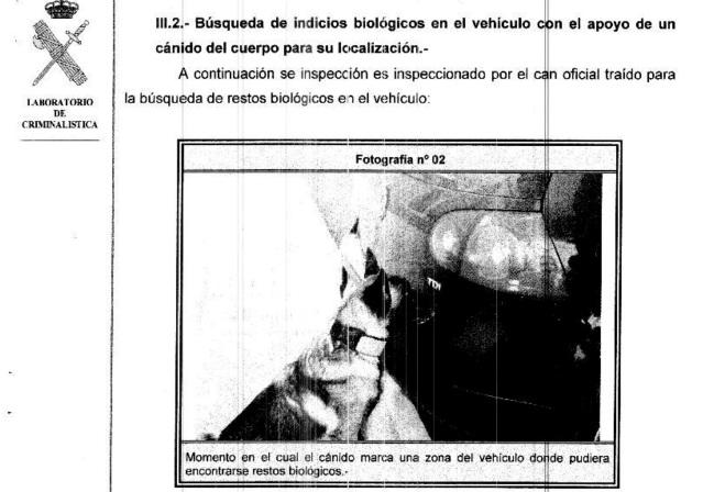 INFORME-ANÁLISIS COCHE-Acusado-doble-crimen-almonte